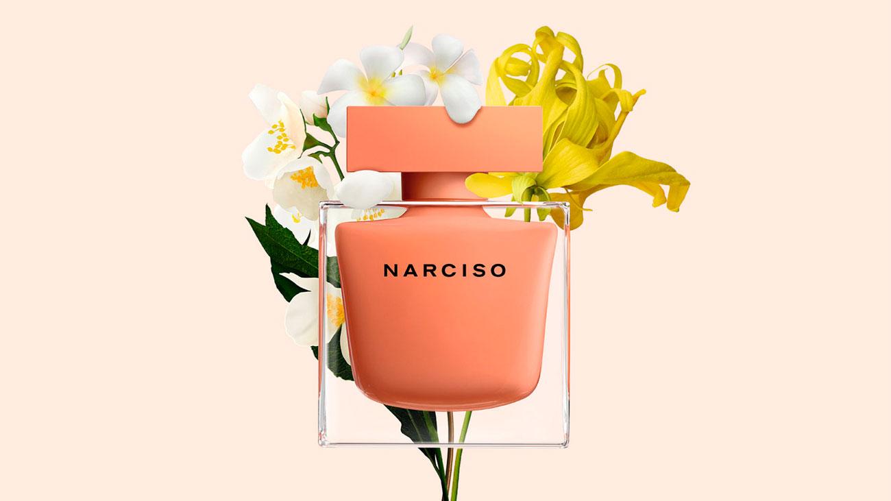 muestras gratis perfume narciso ambree